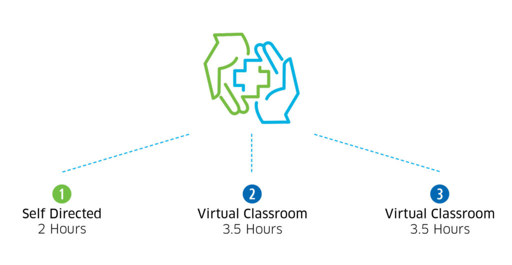 MHFA Virtual Method of Instruction